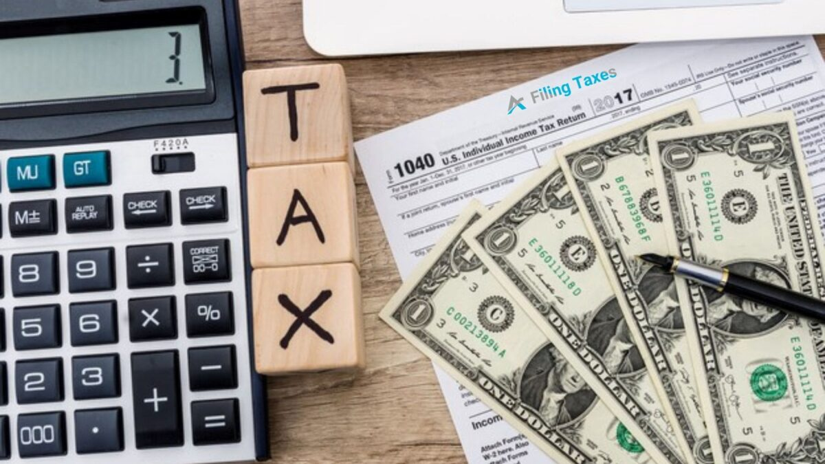 Accountant or Tax Software